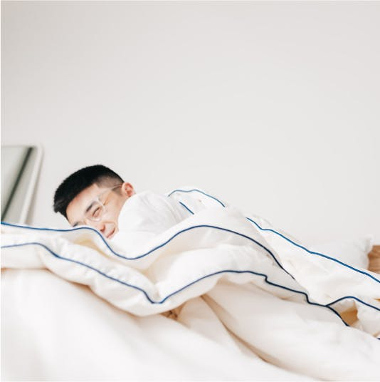 Ecosa Bed Base with Stick Collective