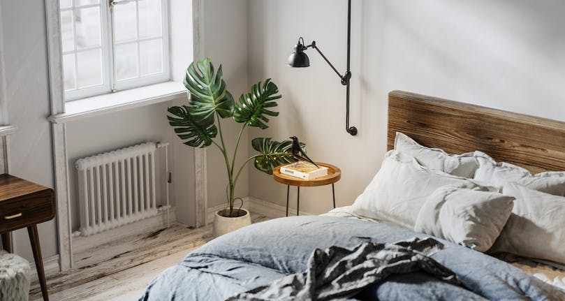 8 Bedroom Plants That Will Help Improve Your Sleep