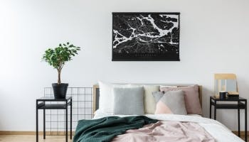 Are Plants OK in the Bedroom?